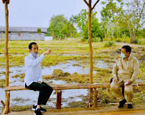 Presiden Jokowi didampingi Prabowo tinjau lokasi lumbung pangan nasional di Kapuas. (Biro Pers Setpres)