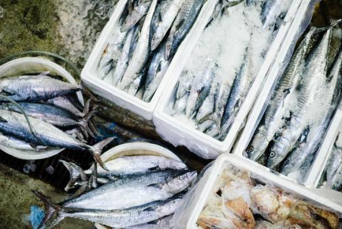 Seafood. (Foto: Unsplash)