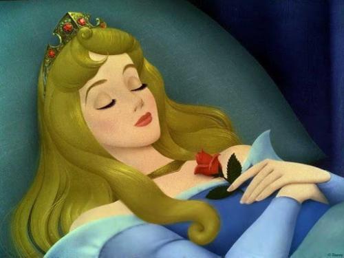 Sindrom Putri Tidur