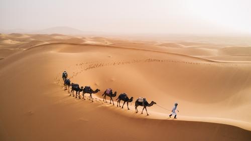 Ilustrasi tanah Arab. (Foto: Shutterstock)