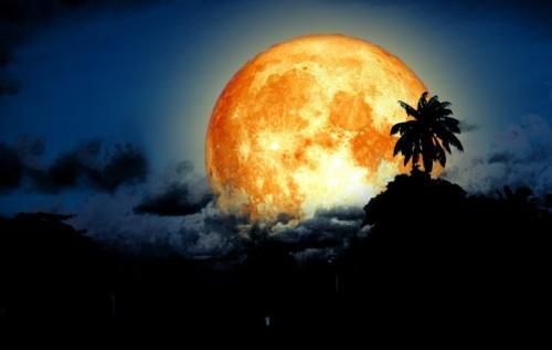 The Sturgeon Moon