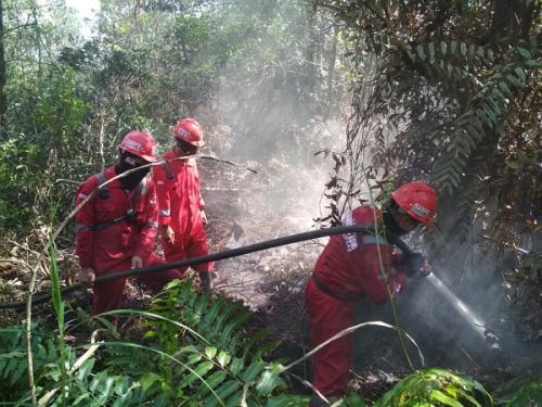 Usai upacara TNI dan Manggala Agni kembali berjibaku padamkan api (Okezone)