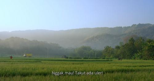 Tilik. (Foto: YouTube/Ravacana Films)