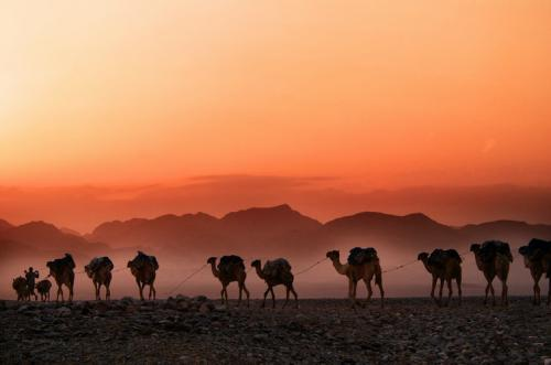 Ilustrasi tanah Arab. (Foto: Unsplash)