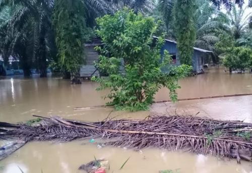 Banjir di Aceh Singkil. (Foto : Dok BNPB)
