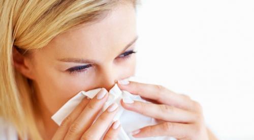 Cuci Hidung