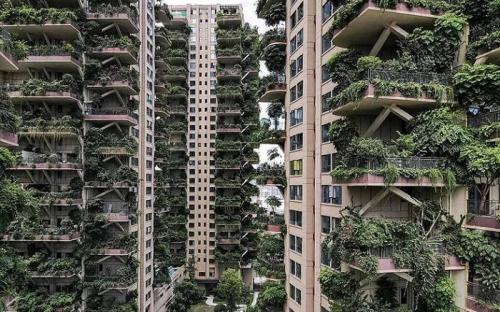 hunian vertikal berkonsep hutan