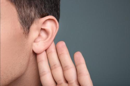 Pendengaran