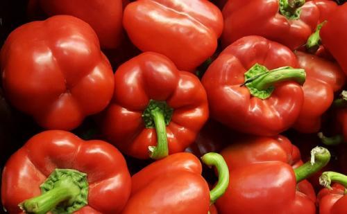 Paprika memiliki beberapa khasiat untuk mendukung kesehatan tubuh.
