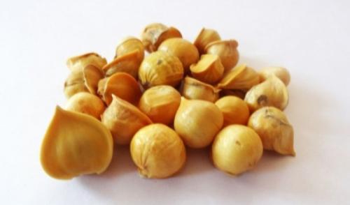Bawang putih himalaya memiliki struktur yang kecil dan berwarna agak kuning.