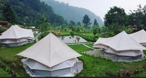 Forrester Glamping Co