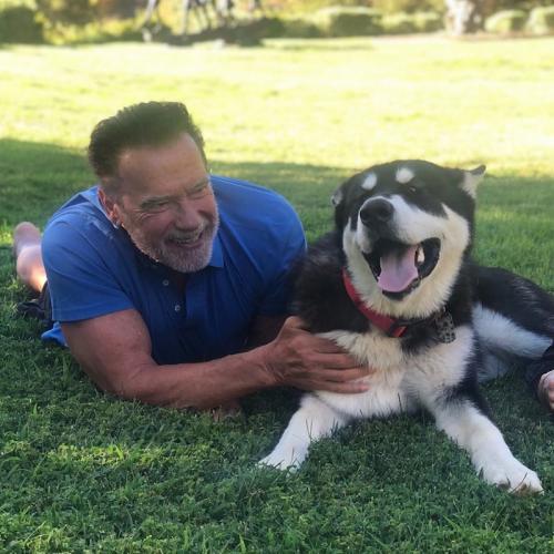 Arnold Schwarzenegger jalani operasi katup aorta pada jantungnya. (Foto: Instagram/@schwarzenegger)