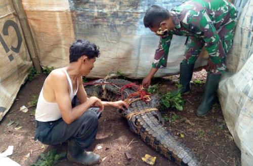 Foto: Dok TNI