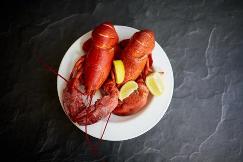 Lobster. (Foto: David Todd McCarty/Unsplash)