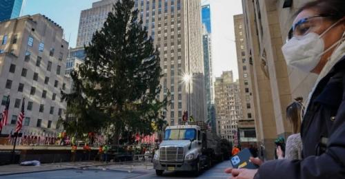 Pohon cemara raksasa di Kota New York. (Foto: VT.co)