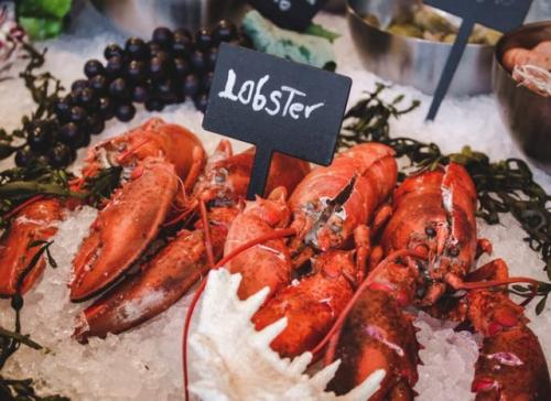Lobster. (Foto: Louis Hansel/Unsplash)
