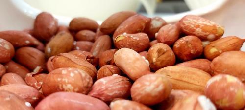 Kacang. (Foto: Amir Ali Ghorbankhani/Unsplash)