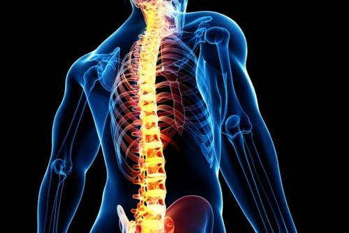 Ilustrasi sakit punggung. (Foto: Shutterstock)