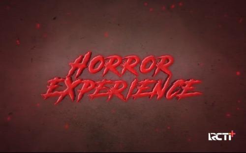 Horror Experience