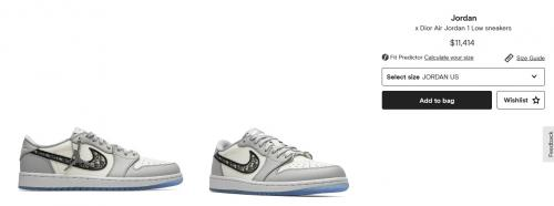 Sepatu Ardi Bakrie