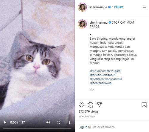 Sherina Munaf. (Foto: Instagram/@sherinasinna)