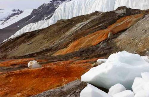 Gletser taylor