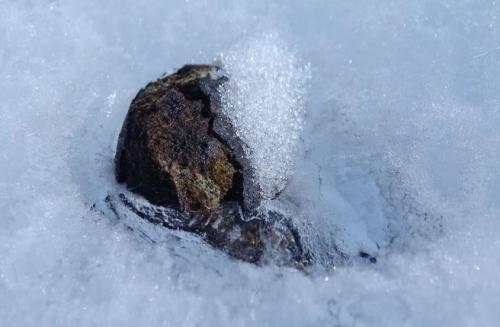 Meteorit Antartika