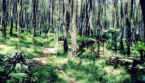 Kawasan Wisata Ujung Aspal