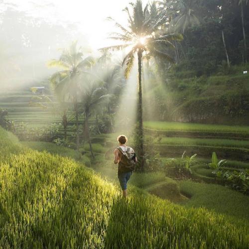 Campuhan Ubud, Bali