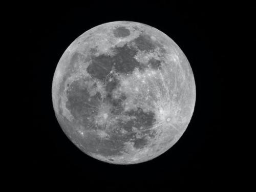 Bulan. (Foto: Unsplash)