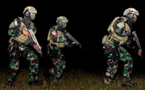 Taifib Marinir