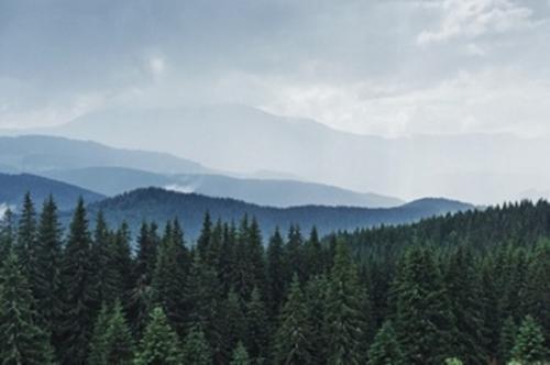 Gunung. (Foto: Standret/Freepik)