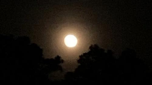 bulan purnama stroberi