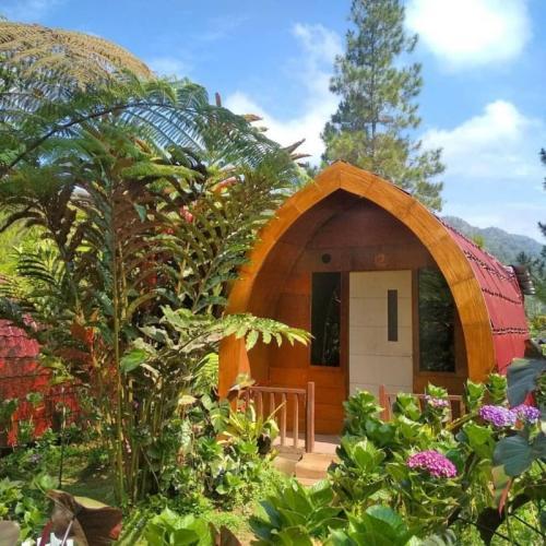 Homestay Unik di Batu Malang, Pagupon Camp