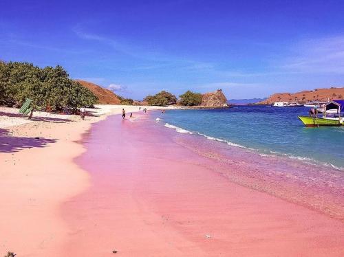 Pink Beach di Labuan Bajo, NTT