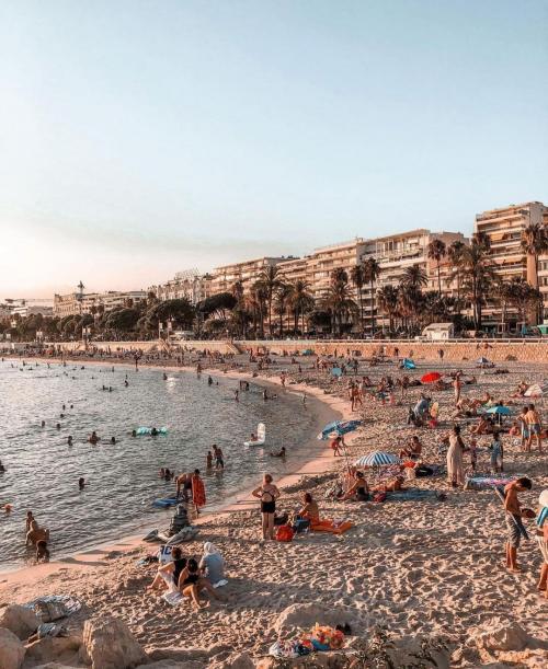 Kota Cannes