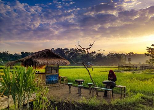 Wisata Gunung Jae, Lombok
