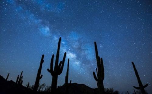 Bintang. (Foto: Pixabay)