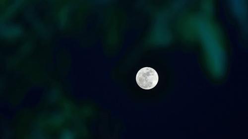 Blue moon di Boyolali. (Foto: Antara)