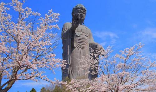 Patung Buddha Ushiku Daibutsu