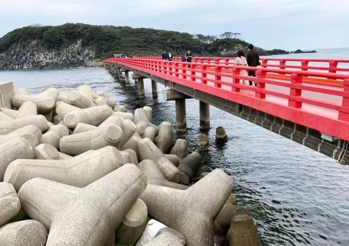 Pulau Oshima, Jepang