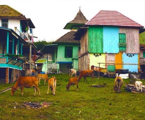 Desa Wisata Burai