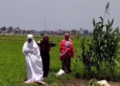 Viral ibu-ibu petani langsung sholat di pinggir sawah usai dengar azan berkumandang. (Foto: Instagram @sahabatsurga)